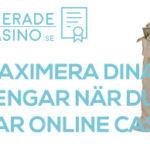 maximera pengar online casino